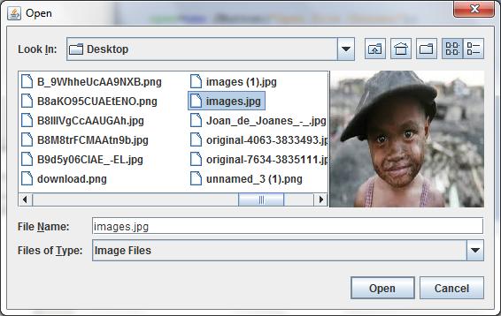 تعلم كيفية ظهور الصورة للمعاينة فى JFileChooser 898118494