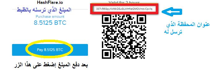 مفصل لعملاق التعدين hashflare إثباتات 744382111.png